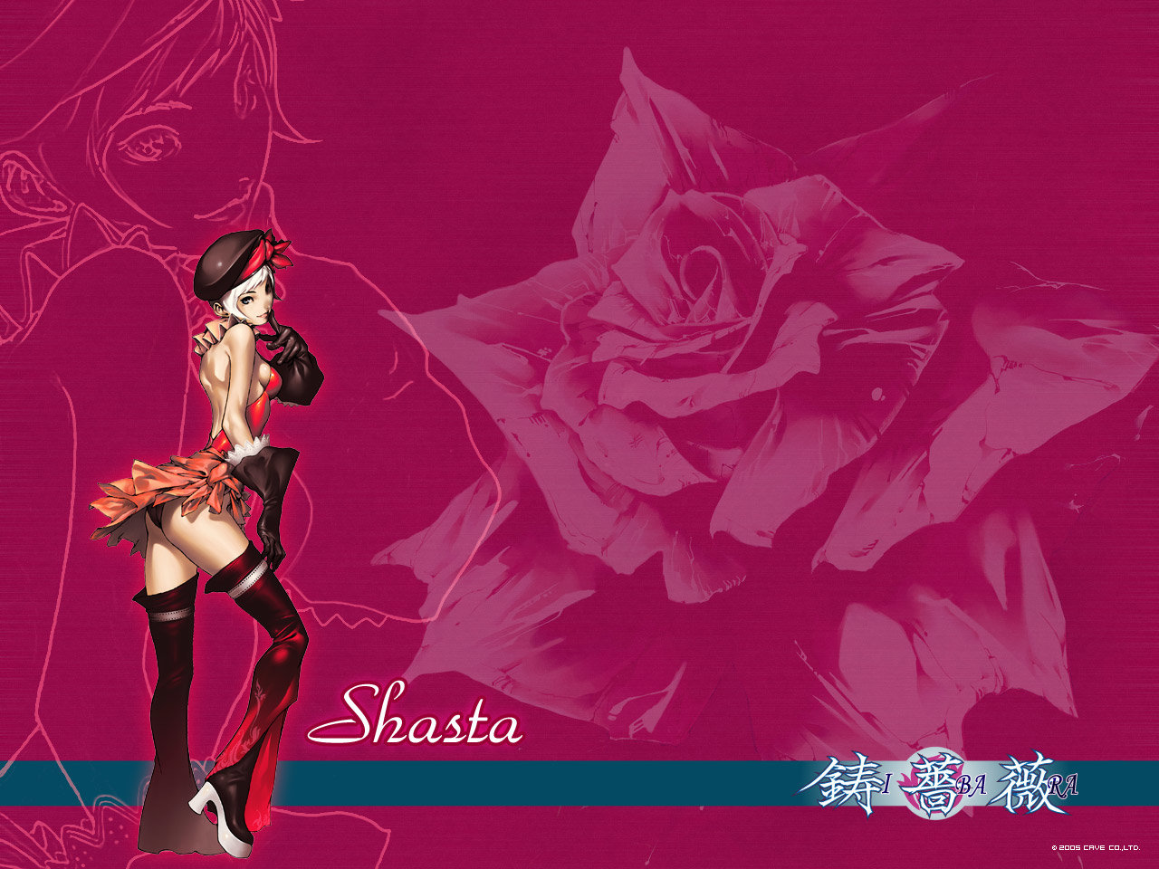 Shasta Rose Ibara Wallpaper 1280x960